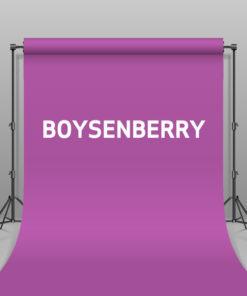 BD Hintergrund Papier Boysenberry