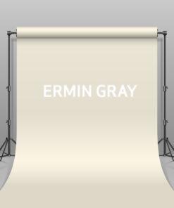 BD Hintergrund Papier Ermin Gray