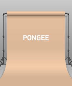 BD Hintergrund Papier Pongee
