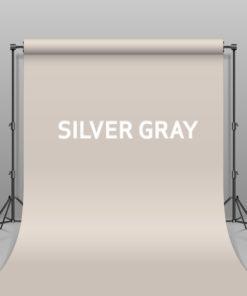 BD Hintergrund Papier Silver Gray